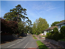 SX9065 : Barton Road, Torquay by Derek Harper