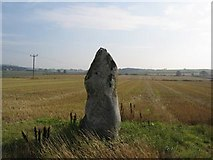 NJ8006 : Springhill Standing Stone by Chris Lodge