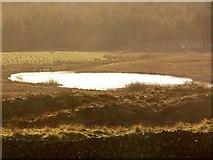 NX2753 : Moorland Lochan by David Baird