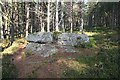 NJ3555 : Jean Carr's Stone by Anne Burgess