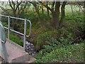 NZ4217 : Bridge over Hartburn Beck by Mick Johnson