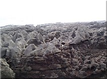 SS5184 : Sea-eroded rocks, Oxwich Point by Chris Henley