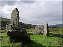 V8363 : Uragh Stone Circle by Cathy Cox