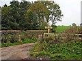 NS3509 : Farm walk at Orchard Farm, Kirkmichael by Oliver Dixon
