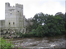 S0524 : Cahir Castle and the River Suir by Nigel Cox