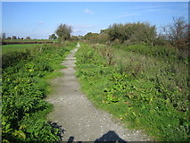 SU1091 : Hayes Knoll: Dismantled railway line by Nigel Cox