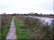 SY9286 : Footpath along the River Frome, Wareham by N Chadwick