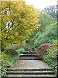 SX7962 : Azalea Dell, Dartington, in autumn by Derek Harper