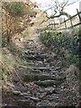 SE0125 : Stake Lane above Mytholmroyd by Phil Champion