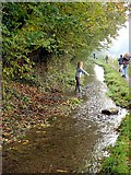 ST7693 : Shallow stream near Coombe by Linda Bailey