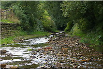 SD9321 : Walsden Water near Scott Street Recreation Ground by Phil Champion