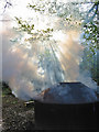 ST8308 : Charcoal kiln in Hillcombe Coppice Dorset by Clive Perrin