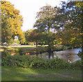 SU8749 : Aldershot Park by Brian Evans
