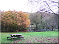 SN0034 : Cilrhedyn bridge picnic area  in the Gwaun Valley by ceridwen