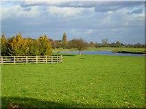 SK6443 : River Trent, Burton Joyce by Stephen McKay