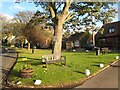 NZ4532 : Elwick Village Green by Oliver Dixon