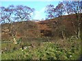 NN9263 : Autumn hillside below the snow line by Lis Burke