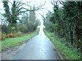 NY4952 : Randlaw Lane by Alexander P Kapp