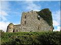 R5068 : Ballycullen Castle by Liam
