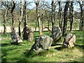 NO5299 : Aboyne Stone Circle by C Page