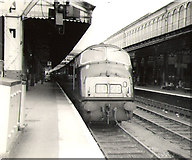 SX9193 : Exeter St David's railway station by Roger Cornfoot