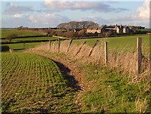 SX5547 : Rowden Court and Farm by Derek Harper