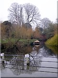 ST6601 : The Duck Pond, Abbey Street, Cerne Abbas by Jim Champion