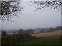 SU7824 : View from end of Durford Wood over to misty South Downs by Keith Rose