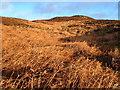 NU0504 : Hill north of Black Pool by Derek Harper