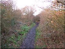 SK5086 : Railway path. by John Poyser