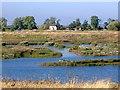 SK8160 : RSPB reserve near Cromwell Lock by Joan Priestley