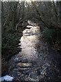NU0900 : Black Burn from footbridge near Cragend by Derek Harper
