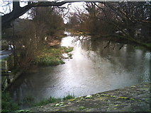 TF1309 : River Welland from Market Deeping bridge by Brian Green
