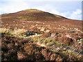 SJ1563 : Moorland below Pwll y Rhos by John S Turner