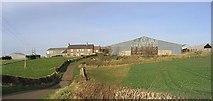 NU0341 : Kentstone Farm by Walter Baxter