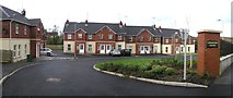 H4573 : Lisnagort Court, Omagh by Kenneth  Allen