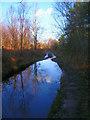 TQ5331 : Waterlogged Lane, Limekiln Forest by Simon Carey