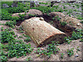 TG2219 : Old Church, Hainford, Norfolk - Vault unearthed by John Salmon