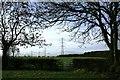 NZ4324 : Public Footpath Junction Near Corner's Plantation by Mick Garratt