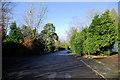 TQ5030 : Crowborough Warren by Robin Webster