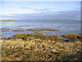 NU1435 : Lindisfarne National Nature Reserve by Walter Baxter