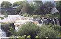 R1288 : Ennistymon Falls by Maigheach-gheal