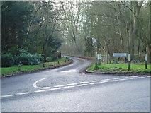 TL7604 : Woodhill Common Road by Malcolm Reid