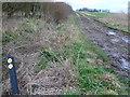 SU1178 : Footpath leading north, Salthrop, near Swindon by Brian Robert Marshall