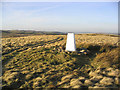 NU0020 : The trig point on Heddon Hill by Walter Baxter