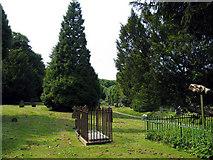 TR3043 : St Andrew, Dover Buckland, Kent - Churchyard by John Salmon