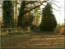 TM2649 : Footpath that leads to Hasketon Manor and beyond by Robert Edwards