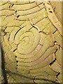 NU0814 : Cracked Bark by Christine Westerback
