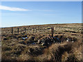NN8601 : Memorial cairn, Blairdenon Hill by Andrew Smith
