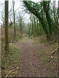 SU8414 : Footpath to Stapleash Down by Simon Carey